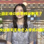上田彩瑛 小学校 四天王寺高校