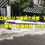 東川口駅 ゲリラ豪雨 冠水 動画 画像